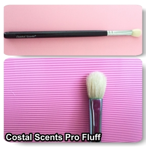 Coastal Scents PRO Fluff Blender